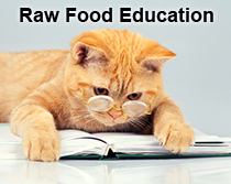 Raw Food Education